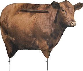 Big Red Cow Decoy