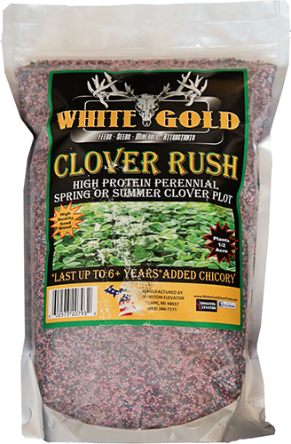 White Gold Clover Rush Seed 5 lbs.