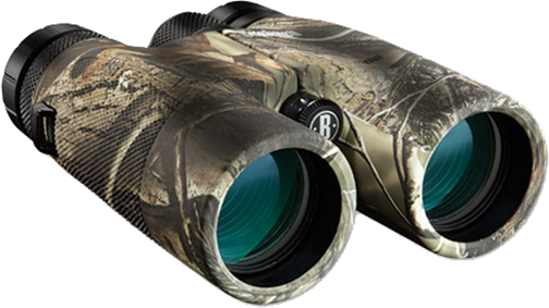 Bushnell 10x42 Powerview Zoom Binocular RTAP Roof Prism