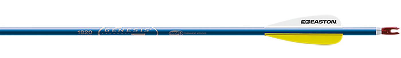 """Genesis Blue Arrows 3"""" Vanes Points Installed"""
