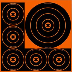"BC Big Burst 8"" & 4"" Target"