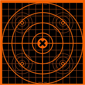 "BC Big Burst 12"" Target"