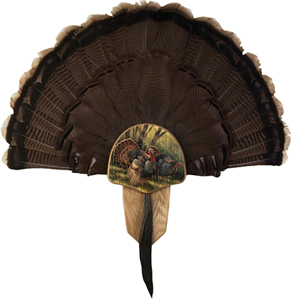 "Turkey Display Kit ""Spring Strut"""