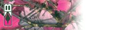 """Blazer Wrap 4"""" Pink Camo HD"""