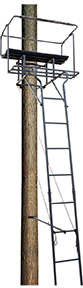 Big Dog Big Bud Ladder Stand Two Man 15 ft.