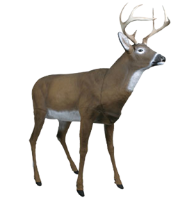 Master Series Boss Buck Decoy