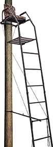 Big Dog Blue Tick Ladder Stand 16 ft.