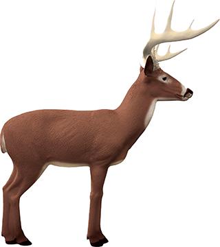Rinehart Booner Buck Target