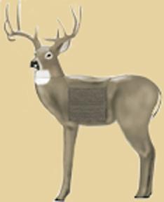 Glendel Full Rut Buck Target