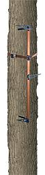 Climbing Stick 3PC Set