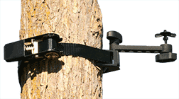 Ozonics Ratchet Tree Strap Attachment