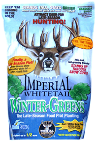 Imperial Wintergreens 3 lbs