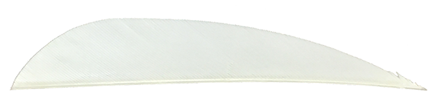 3 RW Gateway Feathers White