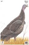 Maple Leaf NFAA Animal Faces Group 3 Turkey