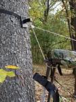 Treestands / Accessories