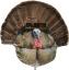 Fanatic XL Turkey Decoy