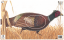 Maple Leaf NFAA Animal Faces Group 3 Pheasant