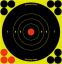 "BC Shoot NC 5.5"" Bullseye 10 Target"