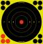 "BC Shoot NC 8"" Bullseye Target"