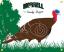 Morrell Polypropylene Target Face NASP IBO Turkey