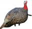 Avian X Turkey Decoy Quarter Strut Jake