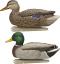 Avian X Top Flight Duck Decoy Open Water Mallard 6 pk.