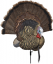 Avian X Turkey Decoy Trophy Tom
