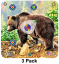 Arrow Mat Grizzly Bear Target 17x17
