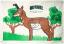 Morrell Polypropylene Target Face NASP IBO Antelope