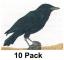 "NFAA Crow Target 11.25""x14.25""( Group 4)"