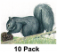 """NFAA Squirrel Target 11.25""""x14.25""""( Group 4)"""