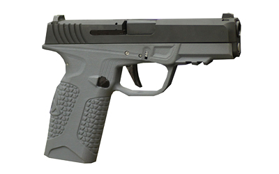 "Avidity Pd-10 9mm 4"" 10rd Gry"