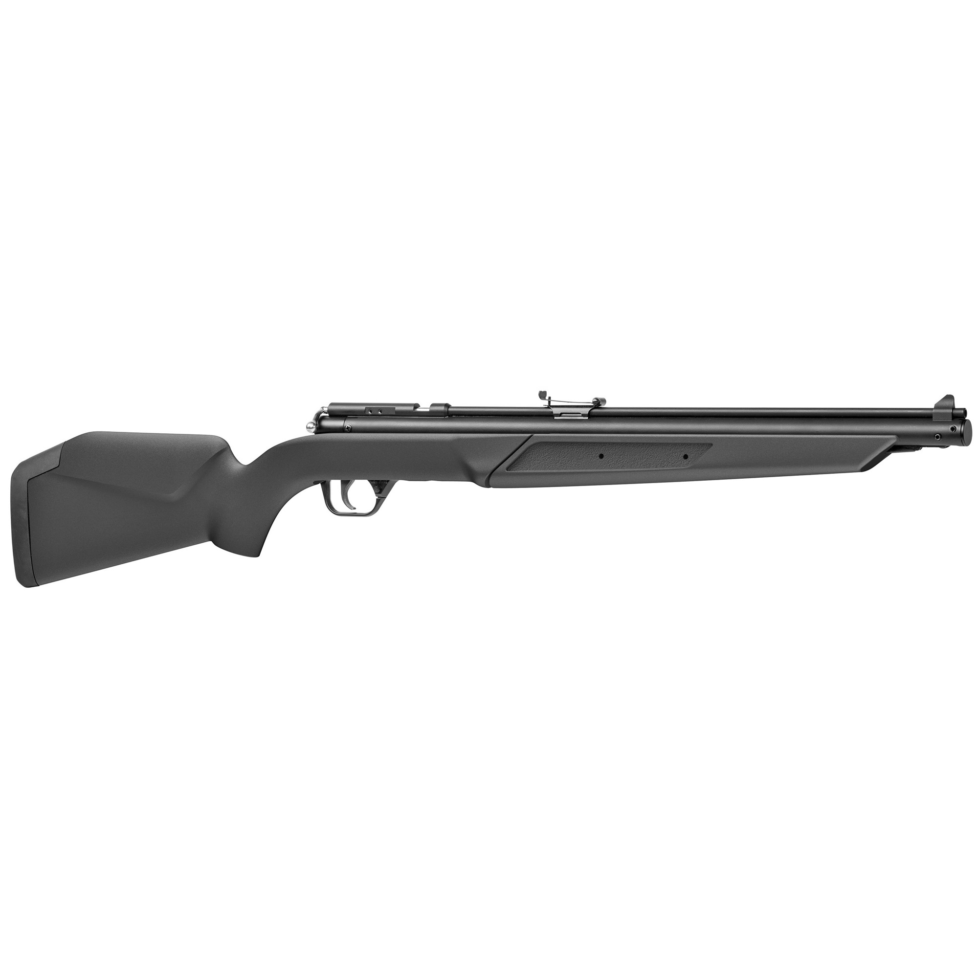 Benjamin .22 Pellet Rifle Pump Blk